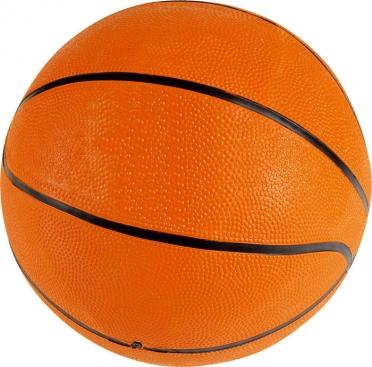 Lifetime Basketball 7 rubber