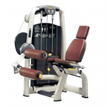 Technogym Leg Curl -  Selection Line