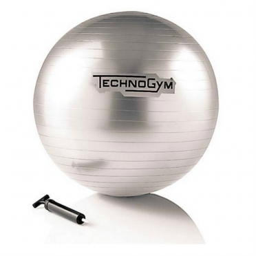 Technogym Wellness Ball Training 55 cm zilver
