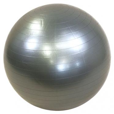 Lifemaxx Gymbal 65 cm zilver LMX 1100.65