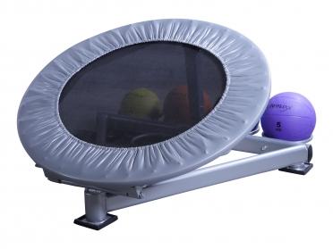 Lifemaxx Medicine Ball Rebounder LMX 1252