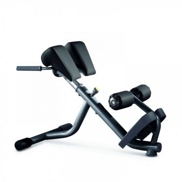 Technogym Element+ Lower Back Bench