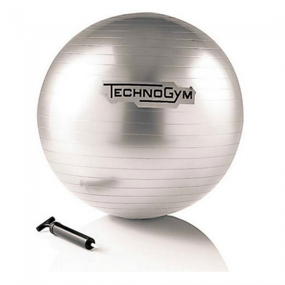 Technogym Wellness Ball Training 55 cm zilver  TECHNOGYMBALL55