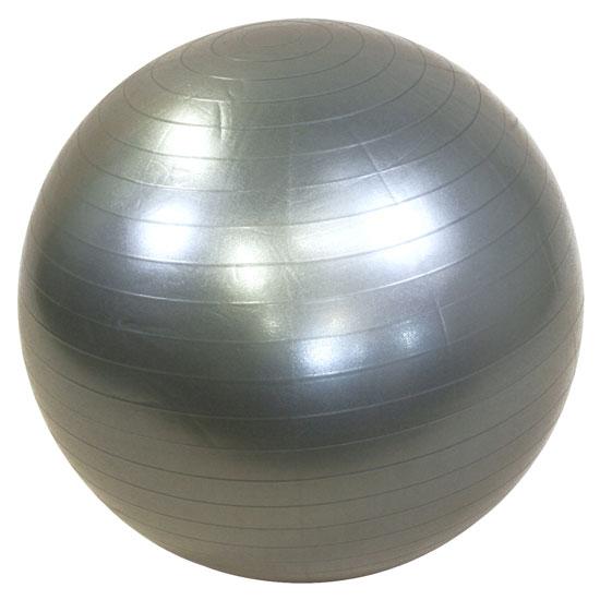 Lifemaxx Gymbal 55 cm zilver LMX 1100.55  LMX 1100.55zilver