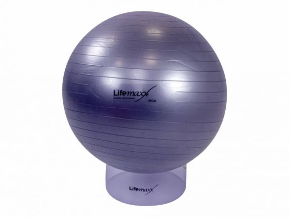 Lifemaxx Gymbal 65 cm zilver LMX 1100.65  LMX 1100.65zilver