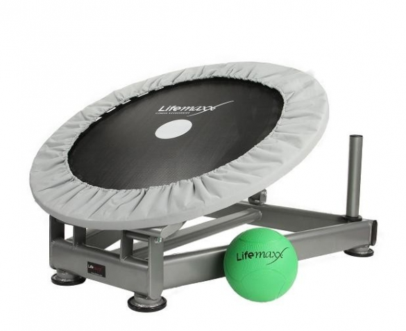 Lifemaxx Medicine Ball Rebounder LMX 1252  LMX 1252