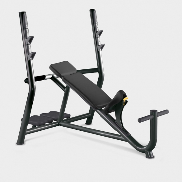 Technogym Element+ Inclined Bench halterstation  TECHNOINCLINED