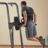 Body-Solid Fusion vertical knee raise power tower  FCD