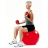 Thera-band gymbal ProSeries 55cm rood 292331  292331